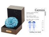 Ivenran ha conservato il fiore fresco del contenitore di regalo dei Gemini