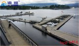 Vendita calda stabile e più forte pontone di galleggiamento della struttura in cemento armato fatto in Cina