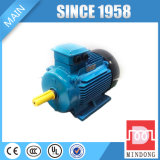 Motor elétrico da Senhora Série Alumínio 250 quilowatts motor de indução 50Hz da gaiola de esquilo de 3 fases