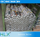 Rolo de aço inoxidável de plástico único, rolo de transporte de aço inoxidável