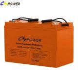 Entwurfs-Leben -20~ der Hersteller-Solarbatterie-12V100ah 15~20years 60 Grad
