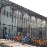 Парник поликарбоната пяди длинной жизни в Keda
