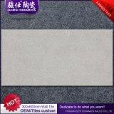 Tegels van de Muur van de Woonkamer van Foshan 300*600 de Ceramische die in China worden gemaakt