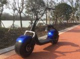 ISO9001 Attractive Price 2 Wheel Citycoco Electric Scooter with EEC Certificate