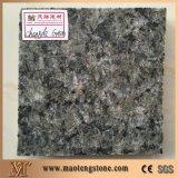 Совершенно сляб гранита Shanxi черный естественный каменный черный
