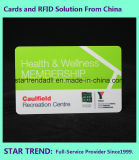 Пластичный стандарт карточки Cr80 с магнитной нашивкой для дела