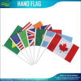 스포츠 (B-NF10F01001)를 위한 선전용 선물 폴리에스테 손 깃발