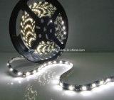 Luz de tira de la calidad SMD 5050 LED Ebay Reino Unido