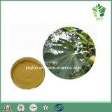 Выдержки листьев Ficus Carica 20:1 10:1 100% флавоны порошка листьев смоквы листьев смоквы Extract/GMP водорастворимой органические
