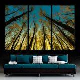 Панели декора стены поставкы фабрики печати холстины Triptych цветастой Split