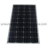 panneau fait maison de picovolte d'énergie d'énergie solaire de 80W Sun