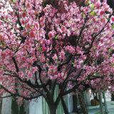 Árvore de pêssego artificial com melhor cor