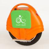 Un verde nero d'equilibratura astuto del motorino della rotella