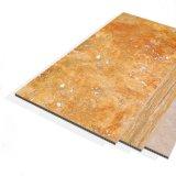 panneau de revêtement de terre cuite de granit de Faux du jet d'encre 3D pour le mur extérieur