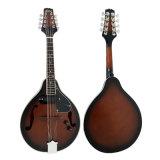 Corpo laminato colore di marca di Aiersi un mandolino elettrico Maa001e di stile