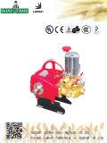 Bomba agricultural/industrial de Lamsin de água com ISO9001 (LS-80)