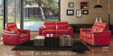 Hauptmöbel-echtes Leder-Sofa (CK-805)