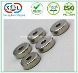 Dünner Ring-Stück-Magnet