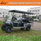 Exportação do carro do golfe de 4+2 assentos ao carro norte-americano, personalizado do golfe com rodas pintadas