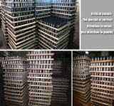 Antihaar-Verlust-Produkt-völlig Haar-Gebäude-Fasern