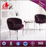 販売のための椅子を食事する現代デザインファブリック