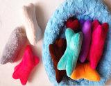 Süßigkeit-Farben-Hundeknochen-Haustier-Hundespielzeug mit Bell