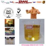 Testosterona esteroide inyectable Enanthate 250mg/Ml del petróleo de Enanject 250