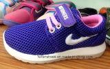 良質の多彩な子供のスポーツは蹄鉄を打つ注入の靴(FF1029-5)に