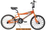 Bicyclette de style libre (TMB-B20BB)