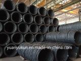 Bobine normale douce 5.5mm de fil de l'origine ASTM AISI SAE 1006/1008/1010 d'usine d'Ex-Action/de la Chine prix de moulin