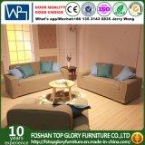 Il sofà moderno semplice del tessuto ha impostato per il salone (TG-CH956)