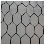 ホット亜鉛めっき六角形金網、チキンワイヤー(CTM3)