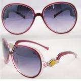 Óculos de sol profissionais de Fashion com Plastic Frame