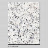 Tuile de granit de Gardenia et granit blancs de galettes