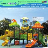 Commercial Outdoor Playground for Kids with CE (HD-5301)