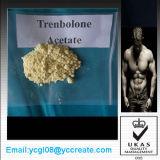체중 감소 안전한 Delivery/10161-34-9를 가진 스테로이드 분말 Trenbolone 아세테이트