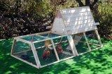 Chambre de poulet en bois (QZC1003)