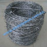 Alambre de púas, alambre de púas galvanizado, alambre de púas del PVC