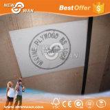 BS1088 imprägniern Marinefurnierholz für Boots-Behälter-Fußboden
