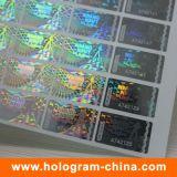 Laser transparente holográfico Holograma número de série Adesivos