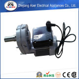 0.75HP AC 230V Éénfasige Asynchrone Aangepaste Motor