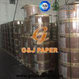 Papier thermosensible enduit de bonne qualité de roulis enorme utilisé pour l'imprimante
