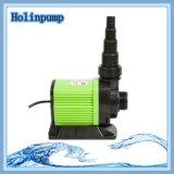 De amfibische Pomp Met duikvermogen van de Tuin van het Water