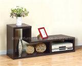 Basamento di modo TV per la mobilia del salone (DMBQ025)