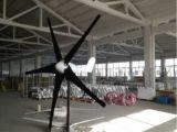 Turbina pequeña 600W horizontal del viento para uso doméstico (100W-20KW)