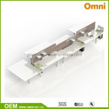 Workstaton (OM-AD-055)를 가진 새로운 고도 조정가능한 테이블