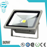 Projecteur du conducteur 30W LED de Meanwell de morceau d'IP65 Waterpfoof Bridgelux
