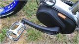 As bicicletas elétricas as mais atrasadas dos fabricantes elétricos chineses da bicicleta