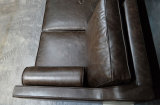 Sofá antiguo del cuero genuino del petróleo de la cera fijado para la sala de estar (GLS-006)