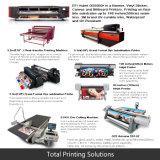 Förderung-Zoll, der Digital-Drucken PVC-Flexvinylfahne bekanntmacht
